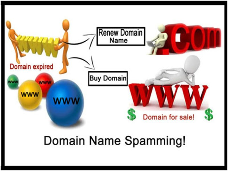 Domain name spaming