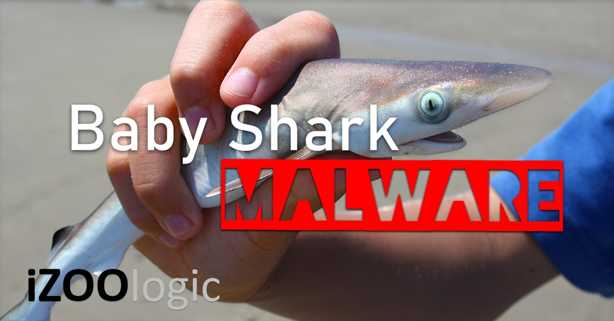 babyshark baby shark malware phishing cryptocurrency