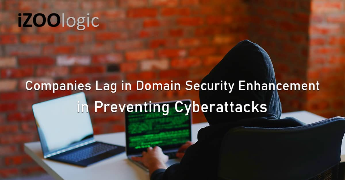 Large companies domain security enhancement cyberattacks DNS